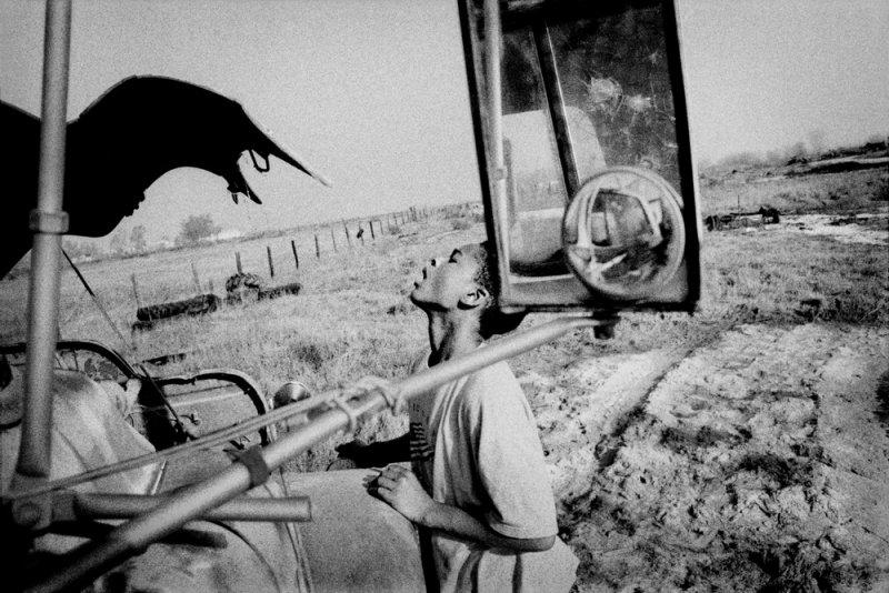 Америка в фотографиях Мэтта Блэка - №20