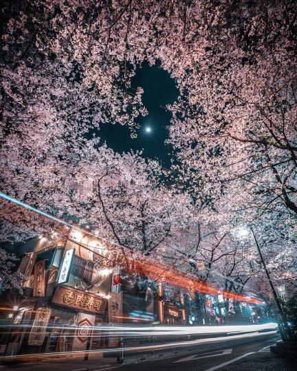 Токийский фотограф RK - №13