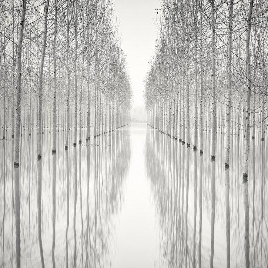 Пейзажные фотографии Пьера Пеллегрини - №2
