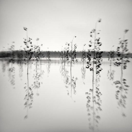 Пейзажные фотографии Пьера Пеллегрини - №4
