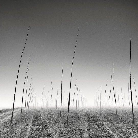 Пейзажные фотографии Пьера Пеллегрини - №8