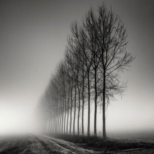 Пейзажные фотографии Пьера Пеллегрини - №10