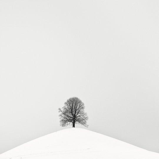 Пейзажные фотографии Пьера Пеллегрини - №12