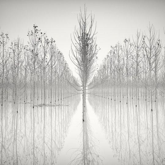 Пейзажные фотографии Пьера Пеллегрини - №14