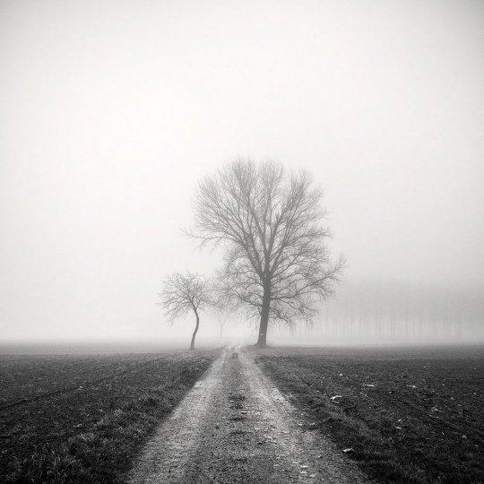 Пейзажные фотографии Пьера Пеллегрини - №22