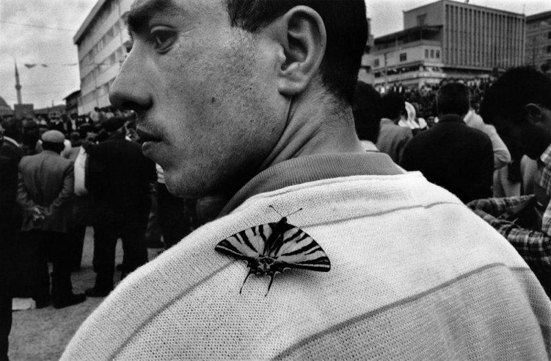 Греческий фотограф Никос Экономопулос - №22