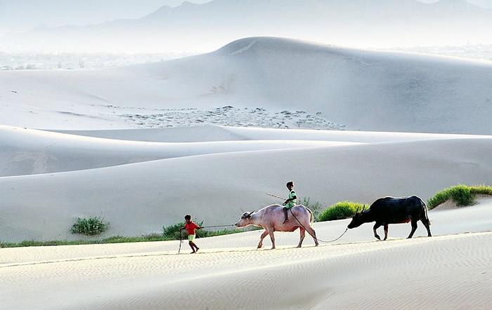 Вдохновляющие работы фотографа Ли Хоанг Лонга - №8