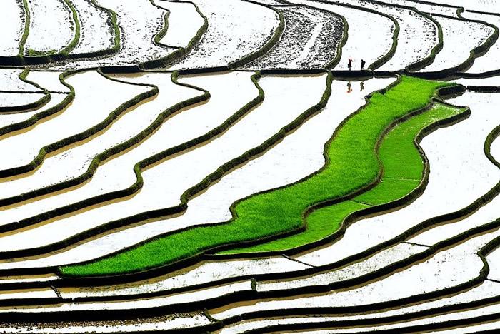 Вдохновляющие работы фотографа Ли Хоанг Лонга - №14