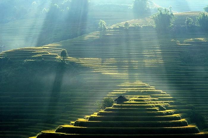 Вдохновляющие работы фотографа Ли Хоанг Лонга - №16