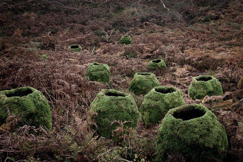 Пейзажи Великобритании от Элли Дэвис - №3