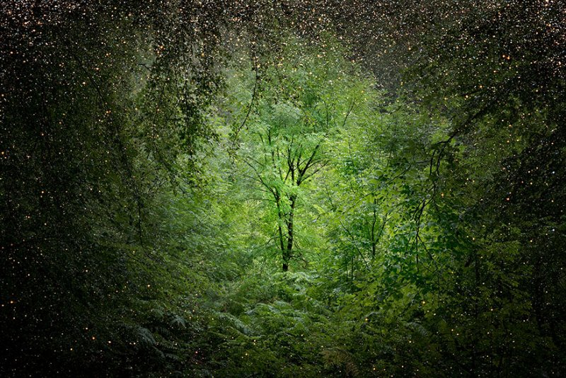 Пейзажи Великобритании от Элли Дэвис - №11