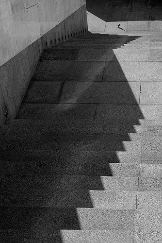 Фотограф Вивиан дель Ри - №8