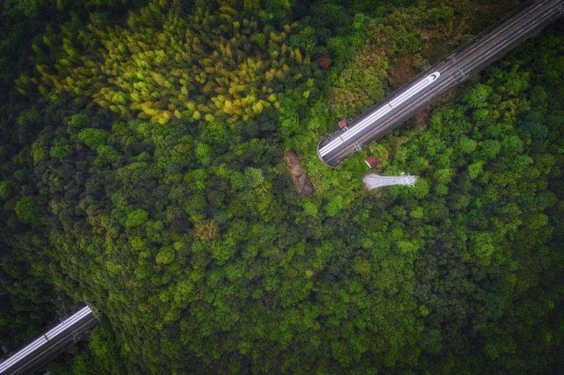 Автор фото: Гуаньгхуи Гу