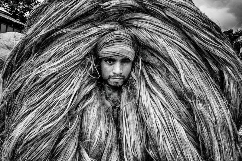 Автор фото: Закир Хоссейн Чаудхури.