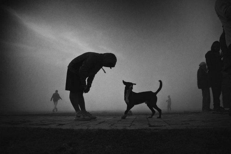 Фотограф Raj Sarkar - №6