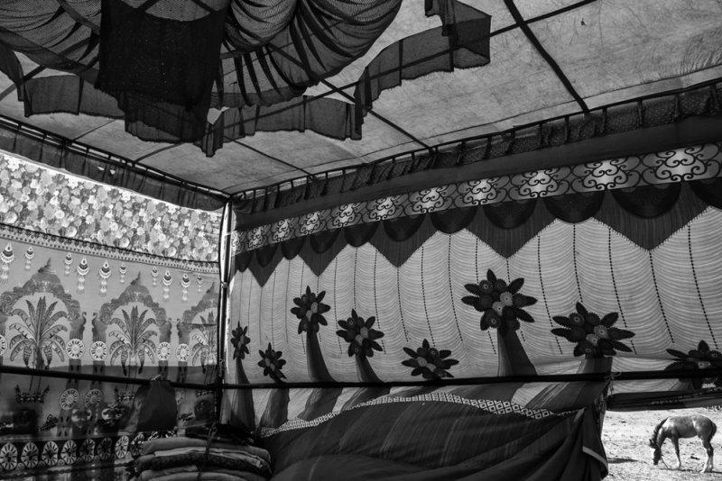 Фотограф Raj Sarkar - №10