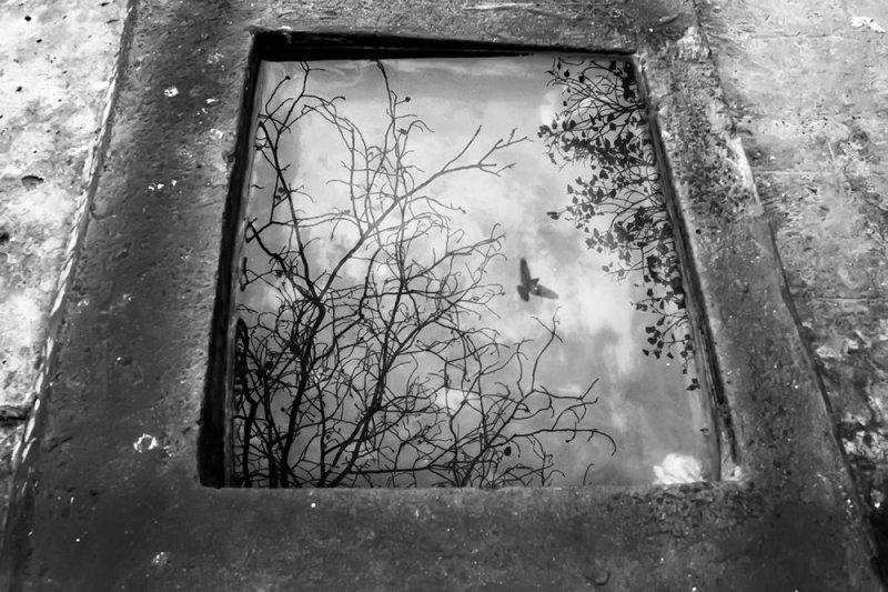Фотограф Raj Sarkar - №14