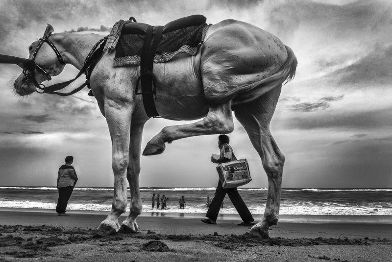 Фотограф Raj Sarkar - №20