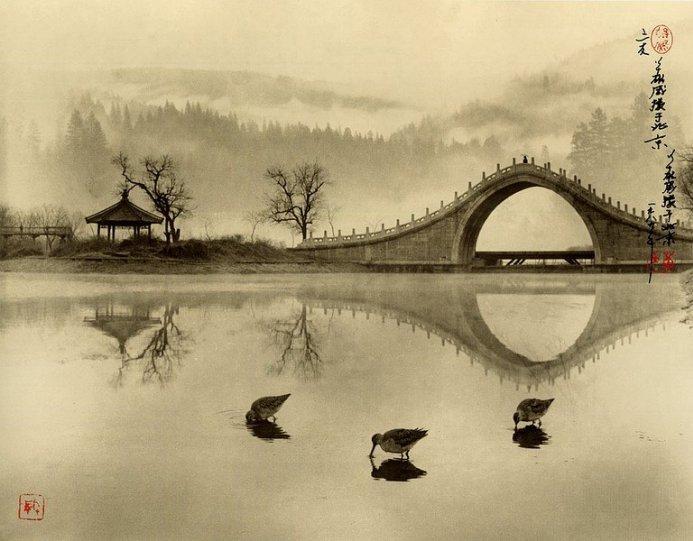 Фотограф Don Hong-Oai - №2