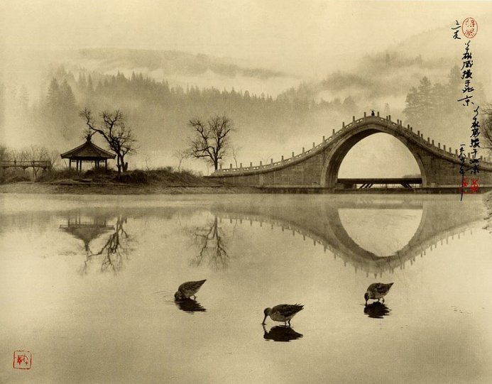 Фотограф Don Hong-Oai - №2
