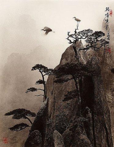 Фотограф Don Hong-Oai - №19