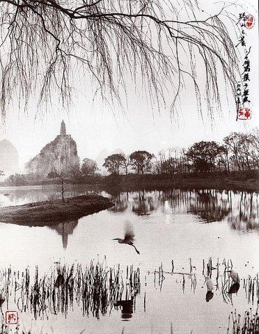 Фотограф Don Hong-Oai - №25