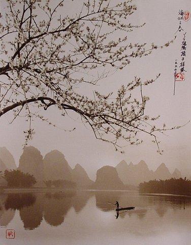 Фотограф Don Hong-Oai - №15