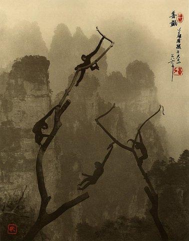 Фотограф Don Hong-Oai - №30