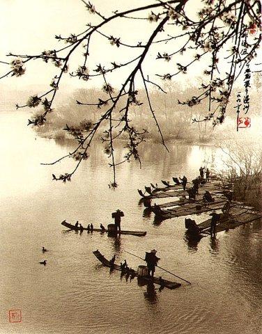 Фотограф Don Hong-Oai - №29