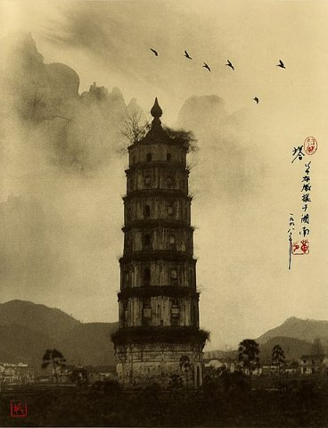 Фотограф Don Hong-Oai - №31
