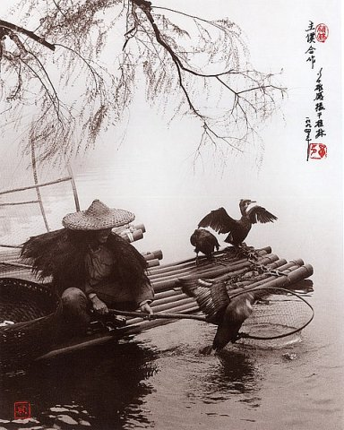 Фотограф Don Hong-Oai - №34