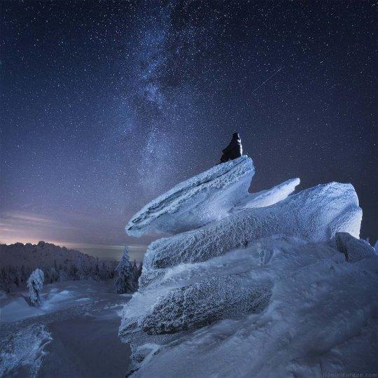 Фотограф Даниил Коржонов - №2