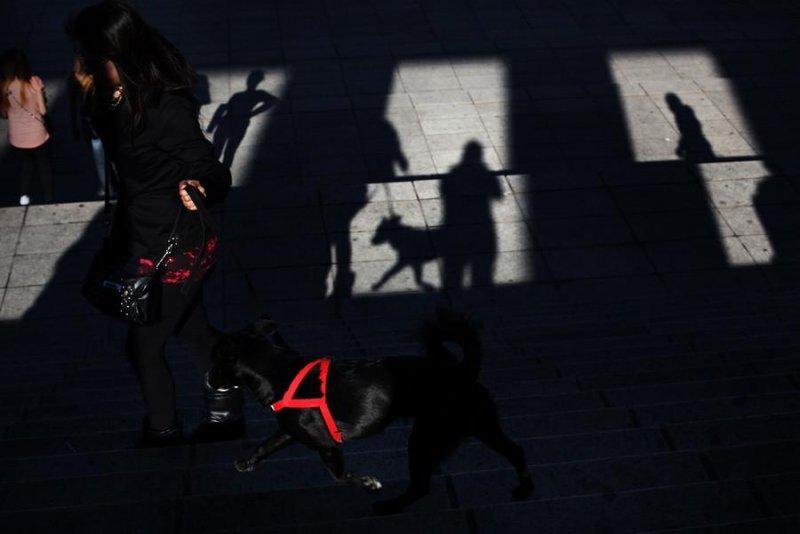 Мария Плотникова: «Уличная фотография – это как джаз в музыке» - №5