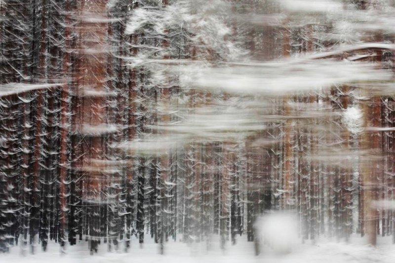 Мария Плотникова: «Уличная фотография – это как джаз в музыке» - №17