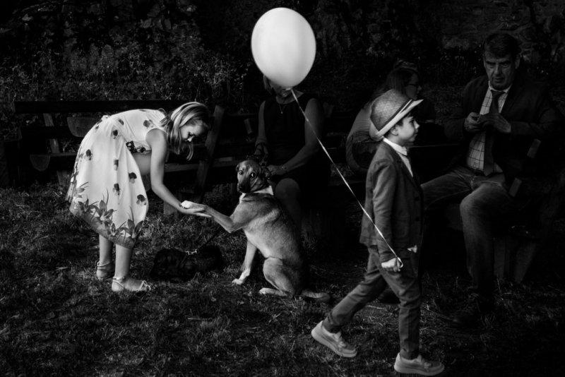 Категория «Одиночное изображение». Автор фото: Стивен Херршафт, Германия.