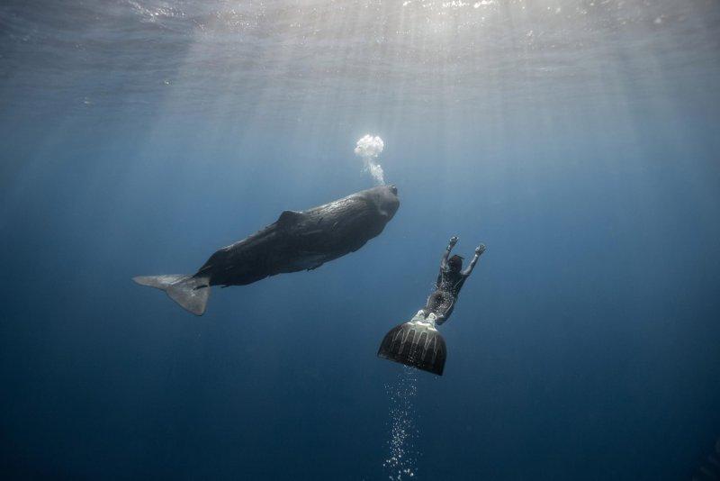 """""""Подводный мир"""" Alex Voyer - №4"""