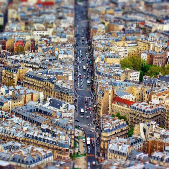 Фото: Александра Петрова & Bharath Wootla (Париж)