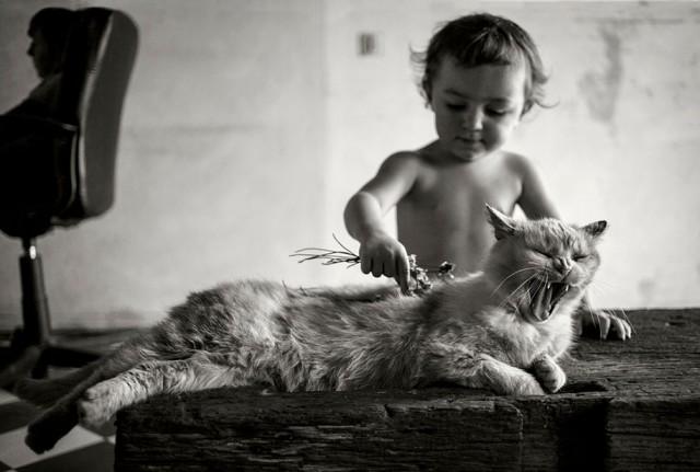Фотографии детей от Алена Лебуаля - №3