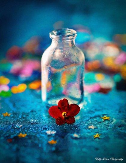 Экстраординарные фотографии цветов - №14