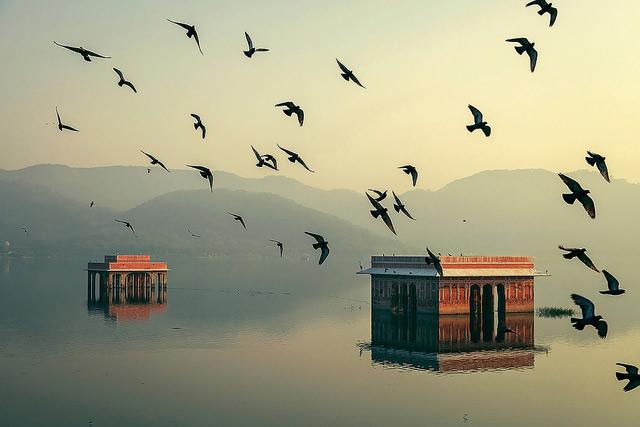 Фото: Mahesh Balasubramanian