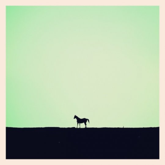 Минимализм в фотографиях Тони Хаммонда - №9