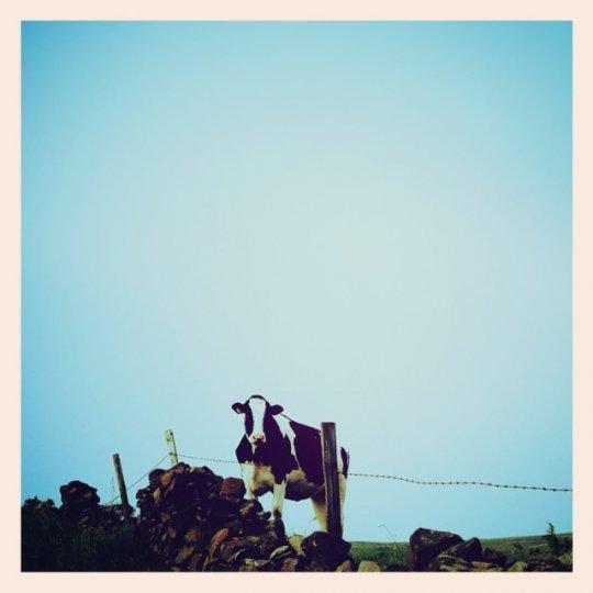 Минимализм в фотографиях Тони Хаммонда - №19