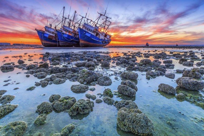Byah Bassi Zubeidi, заброшенные корабли. Фото: Rizalde Cayanan