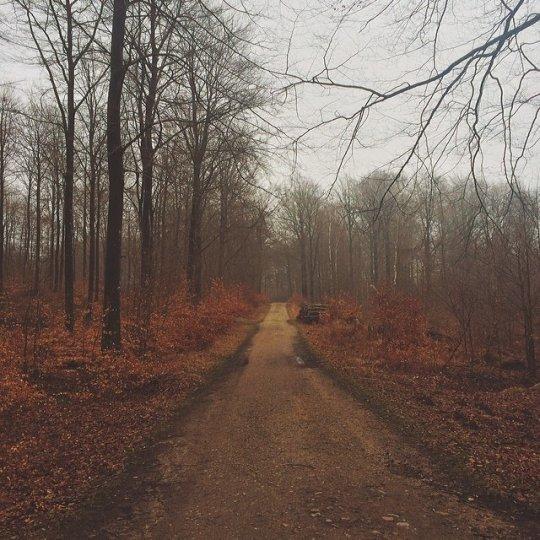 Красивые пейзажи, снятые на телефонную фотокамеру - №3