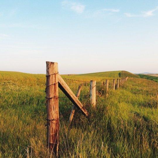 Красивые пейзажи, снятые на телефонную фотокамеру - №7