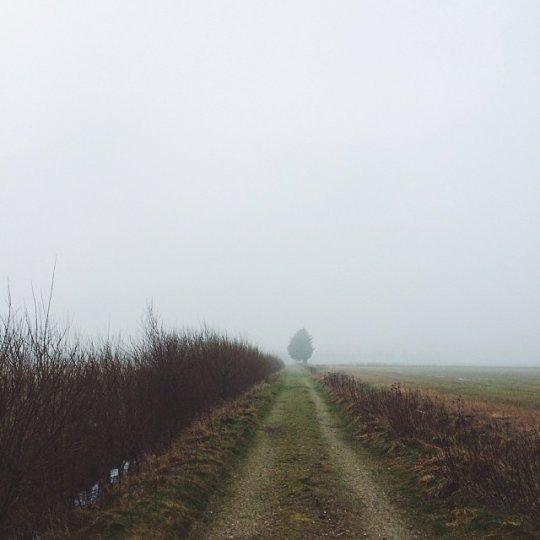 Красивые пейзажи, снятые на телефонную фотокамеру - №9