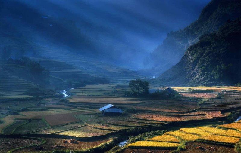 Великолепные рисовые террасы Вьетнама - №3