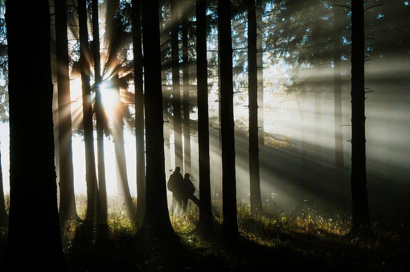Автор фото: Лео Пекштайнер
