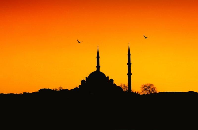 Автор фото: Niyazi Ugur Genca