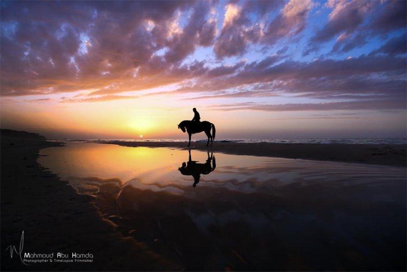 Автор фото: Махмуд Абу Хамда
